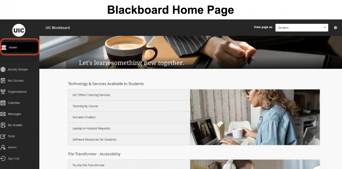 Create Easy-to-Navigate, Appealing Courses in Blackboard with the Spring 2021 Course Template