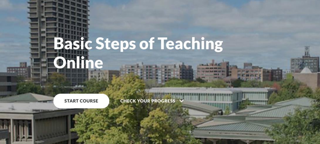 Basic Steps of Teaching Online image